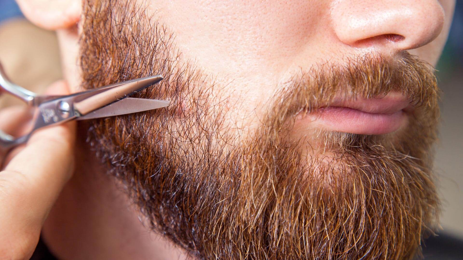 Basic beard care help and instructions for keeping your manly neck mane in prime condition